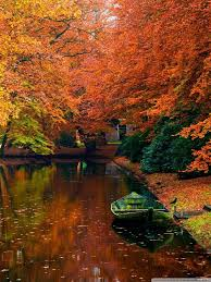 Lake In Autumn Landscape Ultra HD ...