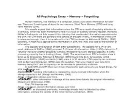 as psychology essay memory forgetting a level  document image preview