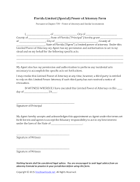 Limited Power Of Attorney Form Download Florida Special Limited Power Of Attorney Form PDF 13
