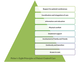 Components Of Patient Medication Chart The Eight Principles Of Patient Centered Care Oneview