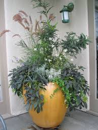 Small Picture 281 best containers images on Pinterest Landscaping Pots and