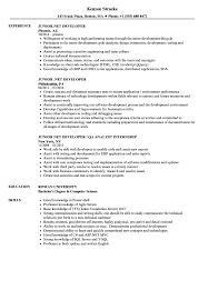 Net Developer Resume Sample Junior NET Developer Resume Samples Velvet Jobs 10