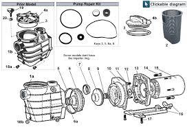hayward super ii pump parts repair diagram hayward super ii pump parts