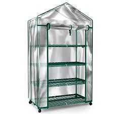 plant greenhouse