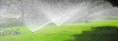 Image result for saving money with a lawn sprinkler