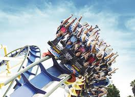 top busch gardens ta bay videos and photos