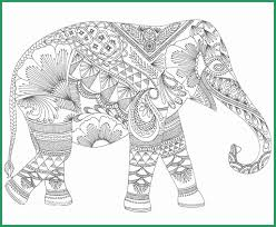 Color Me Stress Free Pages Luxury Adult Colouring Books Enchanted