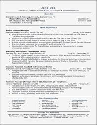 Fake Resumes Impressive Grant Accountant Sample Resume Classy Accounting Experience Examples