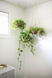 Sparkling Garden Ideas Hang As Wells As Garden Idea Hang Your Plants From  Ceiling Walls in