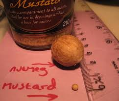 Mustard Been Mistaken The Blog Of Kevin