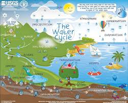 We Love This Interactive Water Cycle Chart From Usgs You