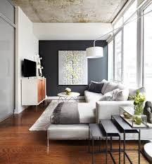 earth tone accent walls living room contemporary with neutral tones dark wall small space area rugs condo rug coffee table classroom seating wool earthy