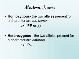 modern terms genotype the genetic makeup of an organism the set of alleles an