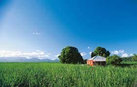 sky, house, Queensland, Sugar Cane Farm ...