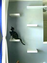 Floating Shelves For Cats Cool Cat Wall Shelf 32 Creative Cat Wall Shelves To Transform Your Home