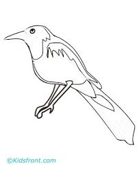 Small Picture Magpie Coloring Pages Printable