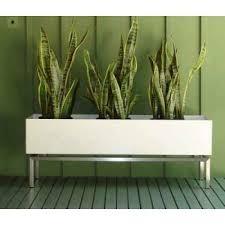 Image Interior Indoor Planter Boxes Foter Indoor Planter Boxes Ideas On Foter