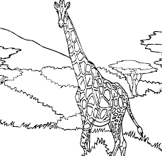 Small Picture Easy coloring pages giraffe giraffe coloring pages 2 Grootfeestinfo