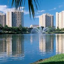 best university of miami images university of  university of miami coral gables florida