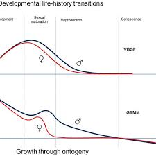 Comparison Of Varying Models For Growth Trajectories In