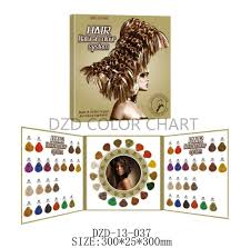 China Foldable Hair Colour Chart Book For Hair Dye China
