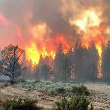 Bootleg Fire Scorches Oregon as Heat ...