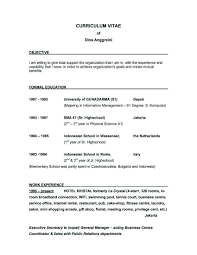 Examples Of Resumes Example Resume Great Objective Statements