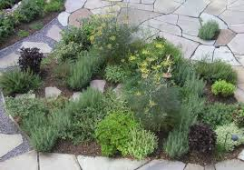 Small Picture Delighful Outdoor Herb Garden 12 Best Herbs To Grow Indoors With Ideas