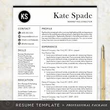 Resume Template Word Mac Magnificent Professional Resume Template CV Template Mac Or PC Modern