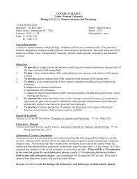essay advertising pros cons print