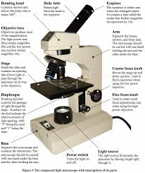 Parts Of The Microscope Parts Of A Microscope And Their Functions Mr Kleins Classes