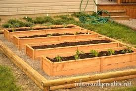 how to build a vegetable garden box. Raised Box Garden Plans Nice Bed Boxes Planting A Creative How To Build Vegetable
