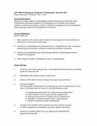 Photographer Resume Sample Pdf Sidemcicekcom Throughout Freelance ...