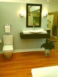 handicapped bathroom designs. Simple Bathroom Layouts Images About Handicapped Bathrooms On Pinterest Grab Bars Minimalist Designs