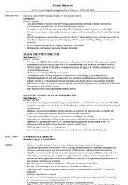 Executive Director Resume Samples – Markedwardsteen.com