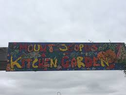 Uses Of Kitchen Garden Fantastic 4 Nexus A Kitchen Garden