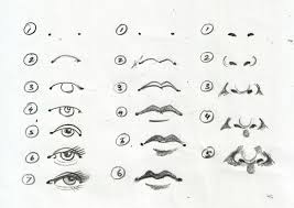 eyes lips nose drawing steps