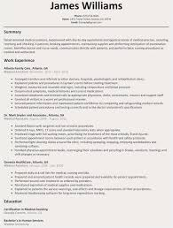 98 Professional Summary Sample Resume Templates For 2019 Free