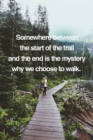 Quotes About Walking Fascinating 48 Walking Quotes 48 QuotePrism