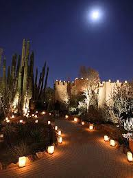 pathway lighting ideas. landscaping ideas from the desert botanical garden pathway lightinglandscape lighting