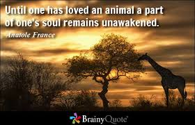 Anatole France Quotes - BrainyQuote