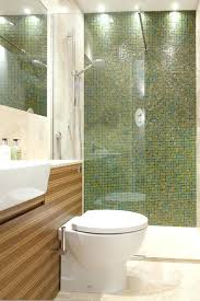 toilet in shower combination a sink and a tin one clad with bamboo panels toilet  shower