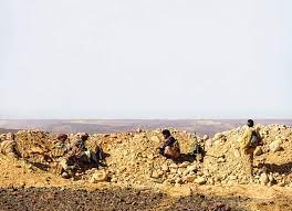 مقاومة مأرب تكسر شوكة الحوثيين – اخبار الامارات العاجلة