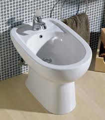 Note 1 For females only The bidet is an excellent utility for cleaning up  the female genitalia after intercourse The procedure is the same