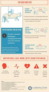 How To Perform Cpr Step By Step Instructions You Should Know