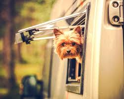 electronic doggie door electronic dog doors for sliding glass doors