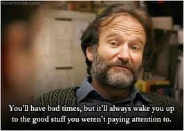 Robin Williams's Quotes And Movies: 42 Years Legacy Of A Great ...
