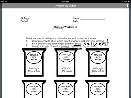 osmosis homework science biology osmosis showme