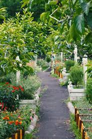 Best 500+ Garden Photos [HD]