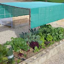 shade cloth over plants